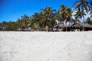 The Coconut Beach Lodge