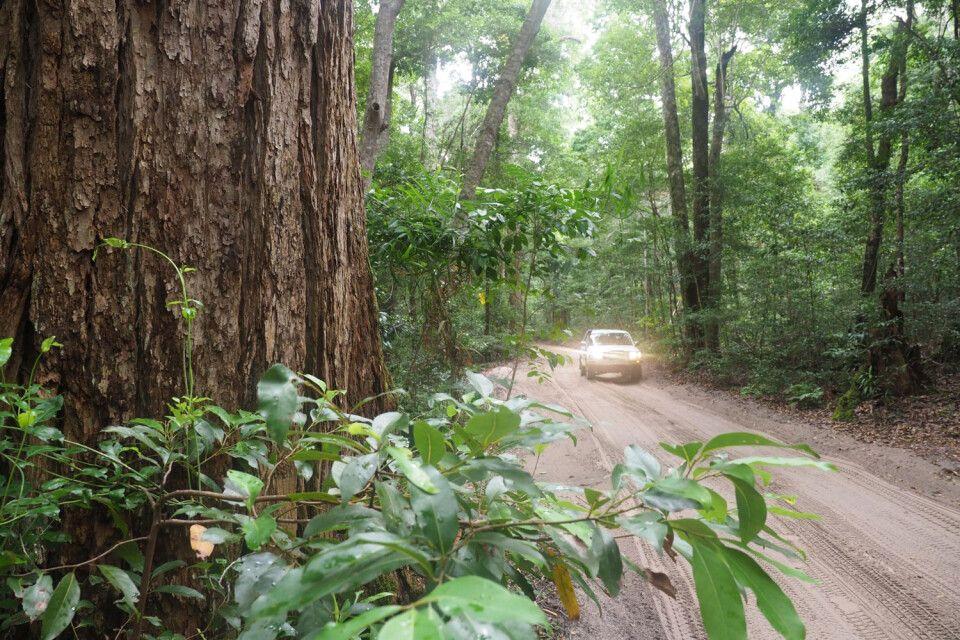 Fraser Island – Im Geländewagen selbst 4x4 Fahrspaß genießen…