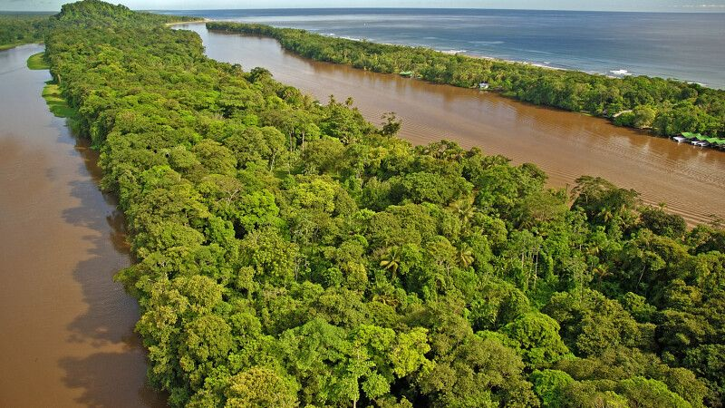 Tortuguero-Nationalpark © Diamir