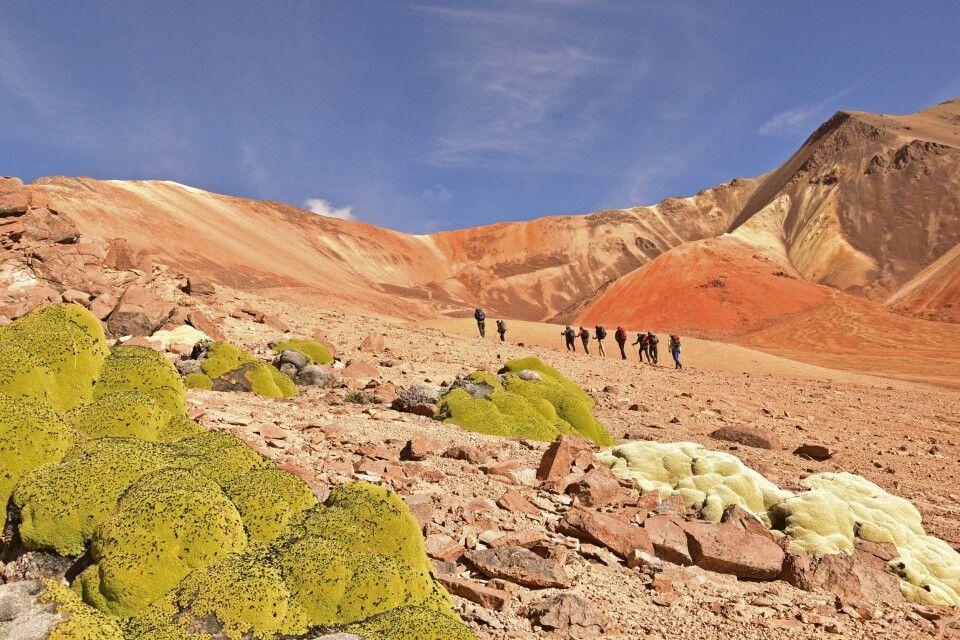 Wanderung in den farbenfrohen Hügeln der Suriplaza