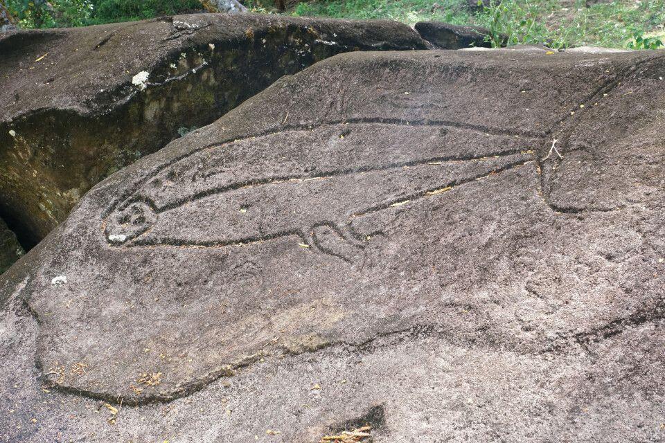 Petroglyphen, uralte, in Stein gehauene Felsbilder, im Dschungel von Fatu Hiva.