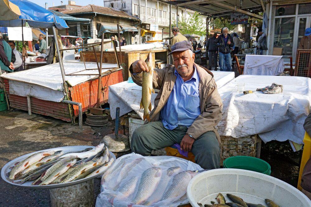 Frischer Fisch aus dem Kaspischen Meer auf dem Markt in Bandar Anzali