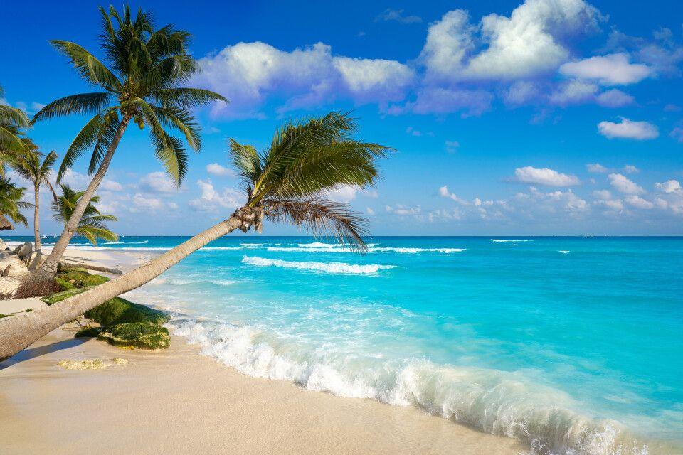 Am Karibik-Strand von Playa del Carmen