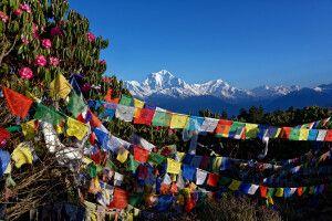 Farbkontraste auf dem Poon Hill (3210 m) in der Annapurna-Region