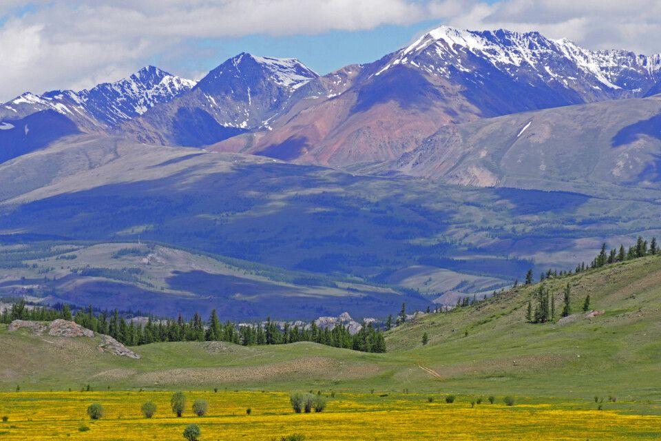 Blick über die Kuray-Steppe