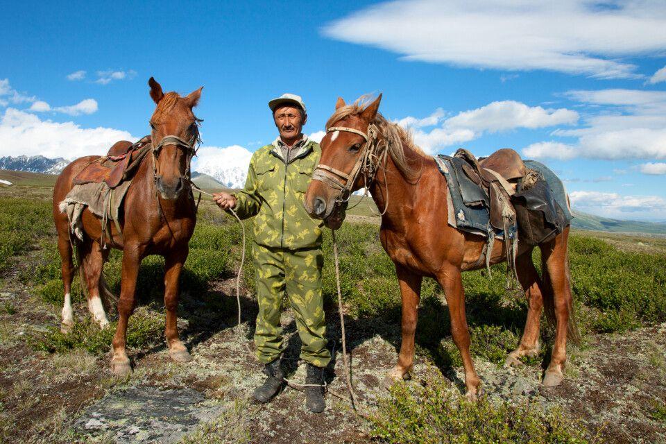 Mann mit Pferden im Kazakh-Altai