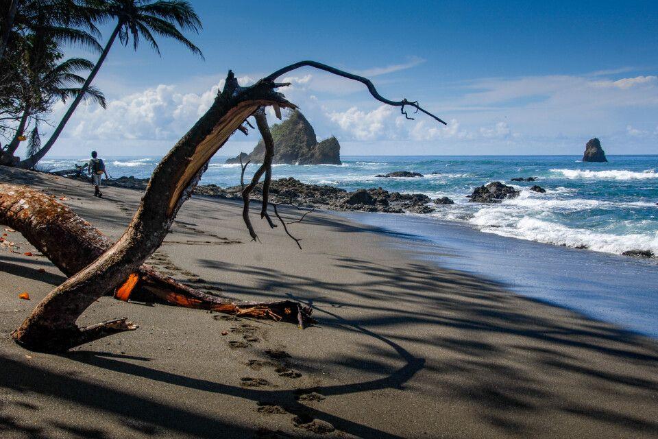 Strand an der Küste im Corcovado National Park