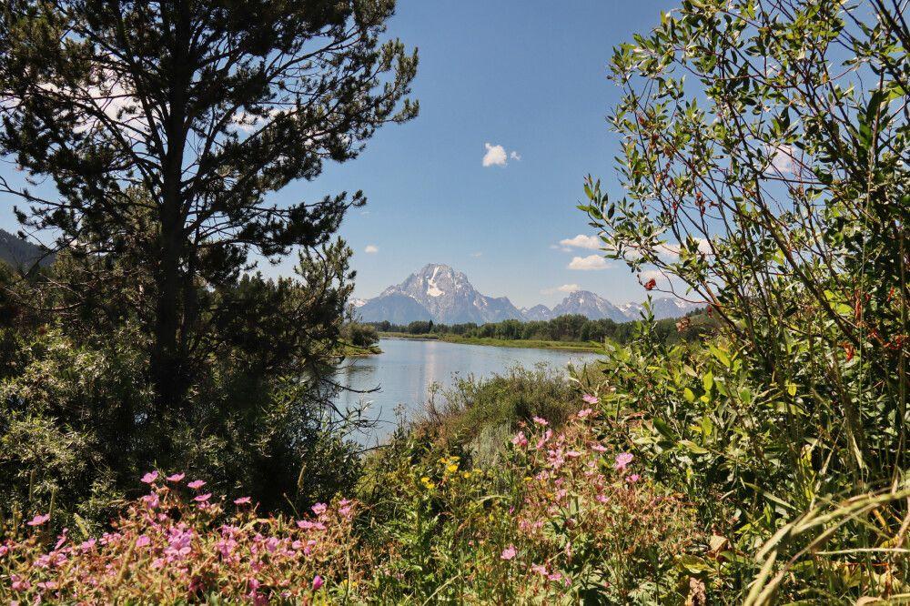 Vom Grand Teton NP zum Yellowston NP