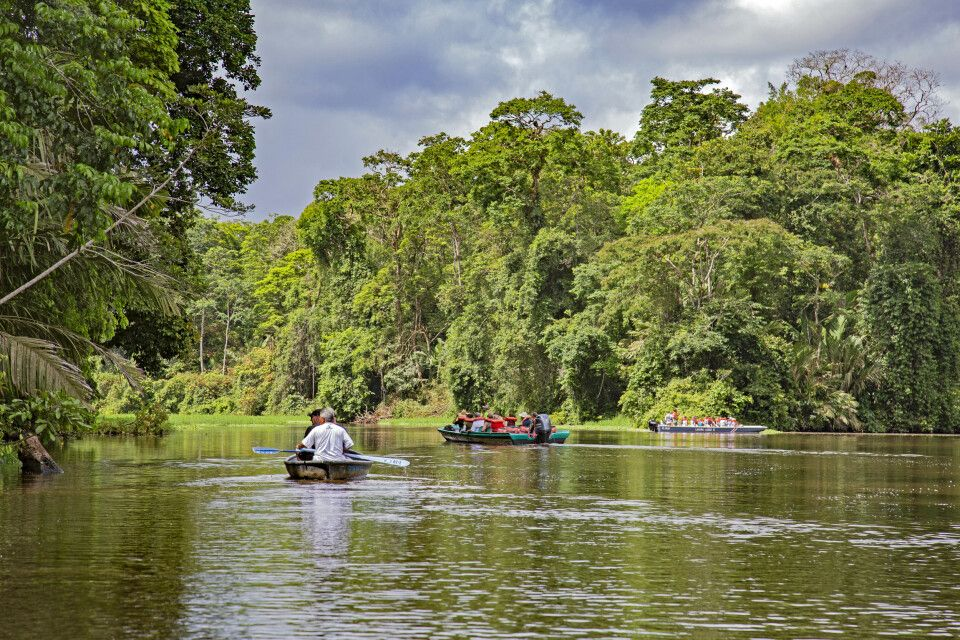 Tortuguero-Nationalpark