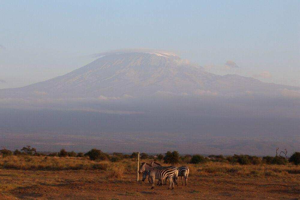 KEN_2019_1SLA_Blick-auf-Kili_Amboseli-Nationalpark-7.jpg