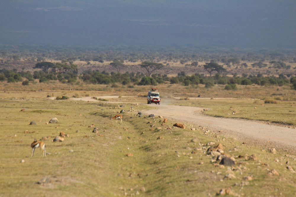 KEN_2019_1SLA_weite-Ebenen-im-Amboseli-Nationalpark-5.jpg