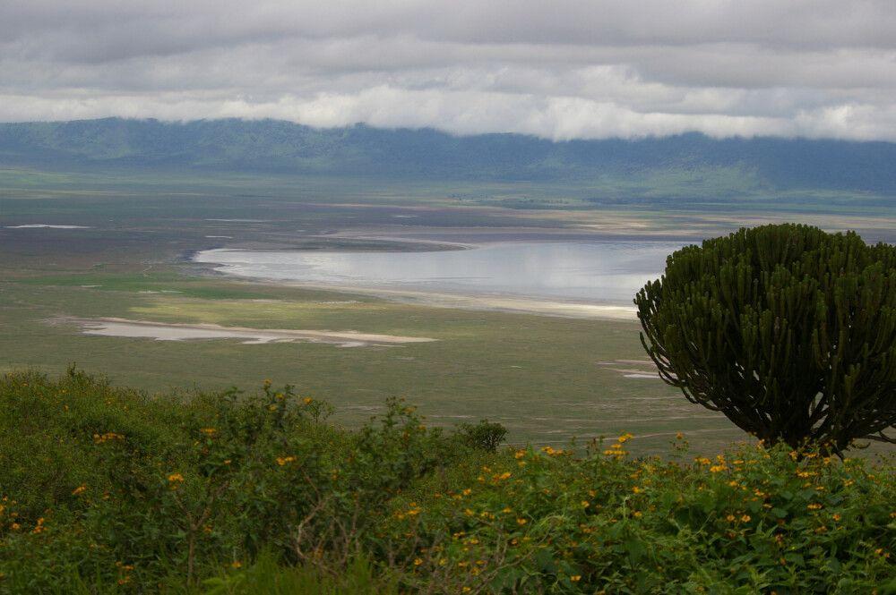TANLTC_230519_1GVO_Ngorongoro-NP.jpg