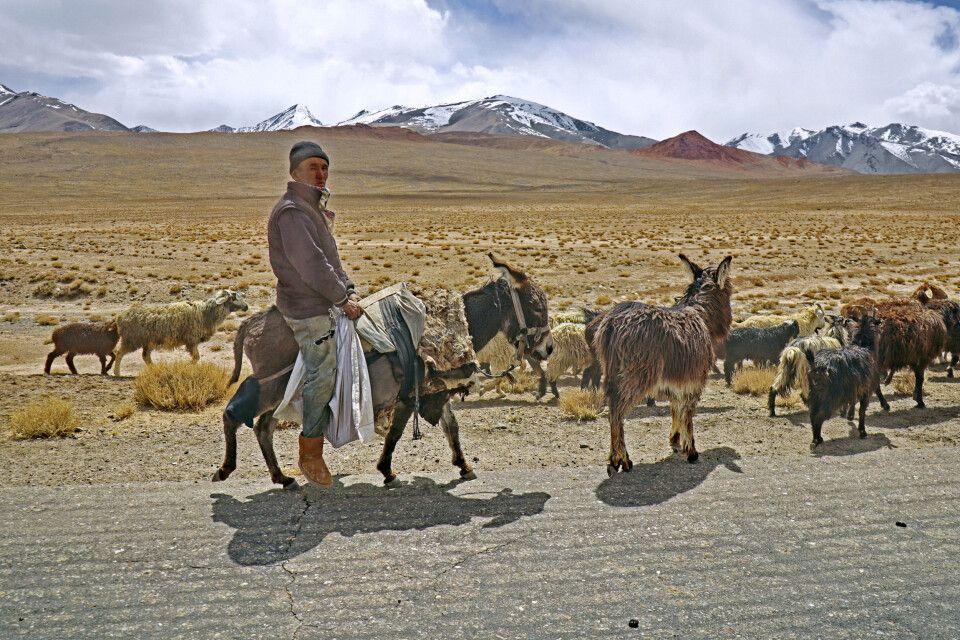 Begegnung auf dem Pamir Hochplateau