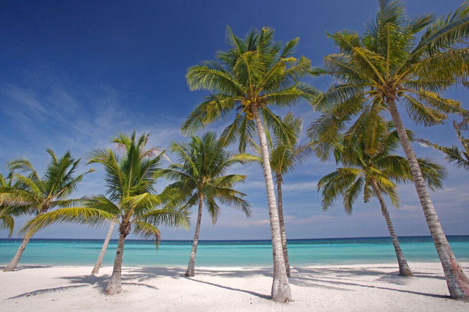 Weißer Sandstrand von Bohol