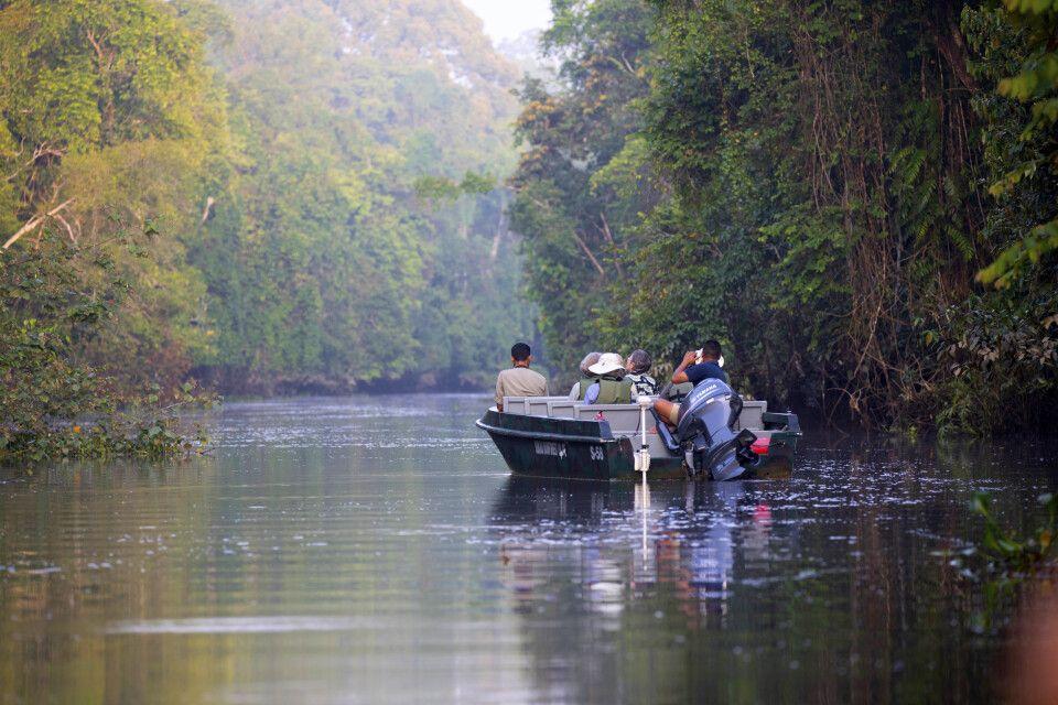 Mit dem Boot lässt es sich am Kinabatangan am besten auf Safari gehen.