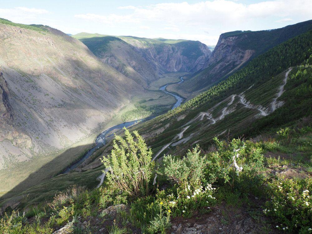 Blick ins Tschulischman-Tal