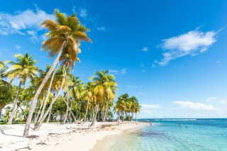 Strand von Caravelle in Guadeloupe