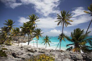 Strand auf Barbados