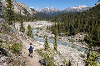 Auf dem Bow Glacier Falls Trail im Banff-Nationalpark