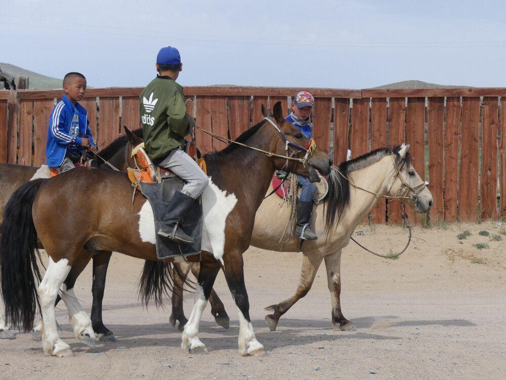 Jungen auf den Pferden – meist sind diese die Jockeys bei den Pferderennen