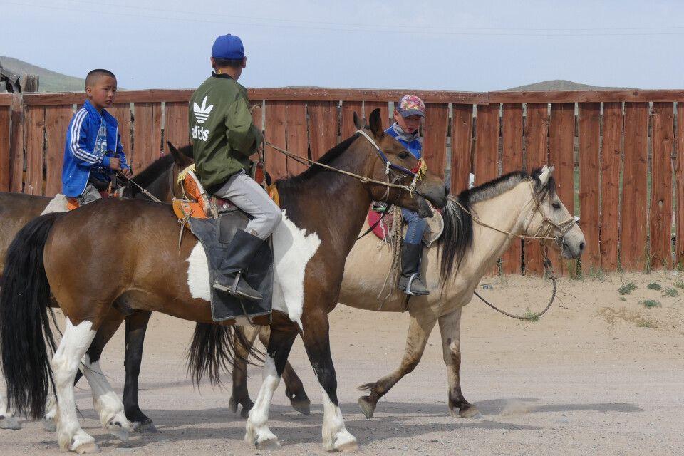 Jungen auf den Pferden - meist sind diese die Jockeys bei den Pferderennen