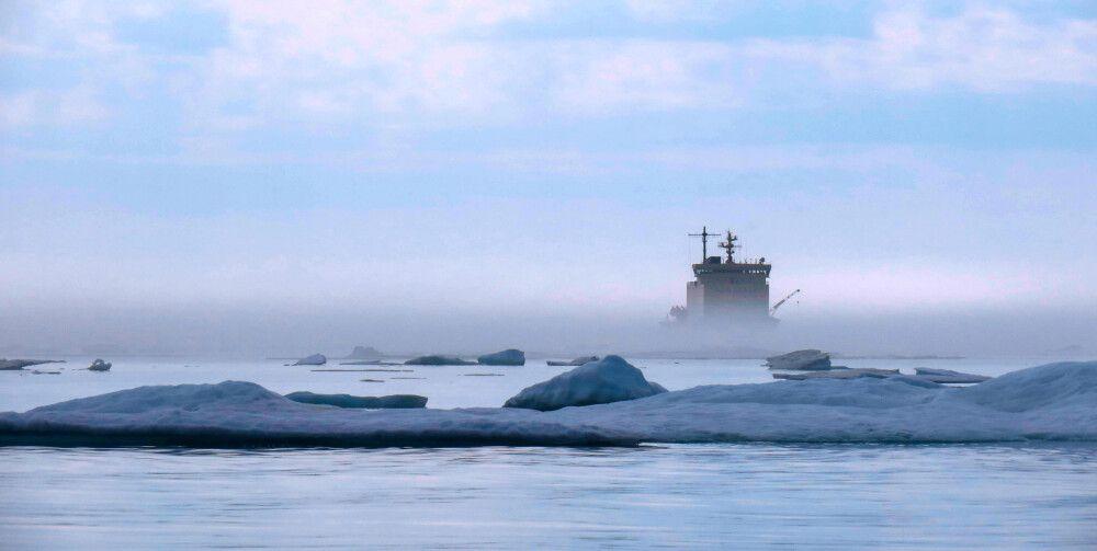 Wie ein Geisterschiff erscheint die Khlebnikov aus dem Nebel