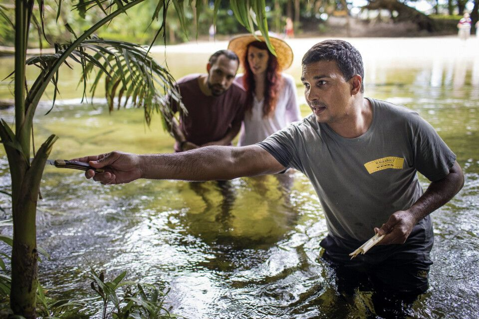 Auf den Spuren der Kuku Yalanji Kultur