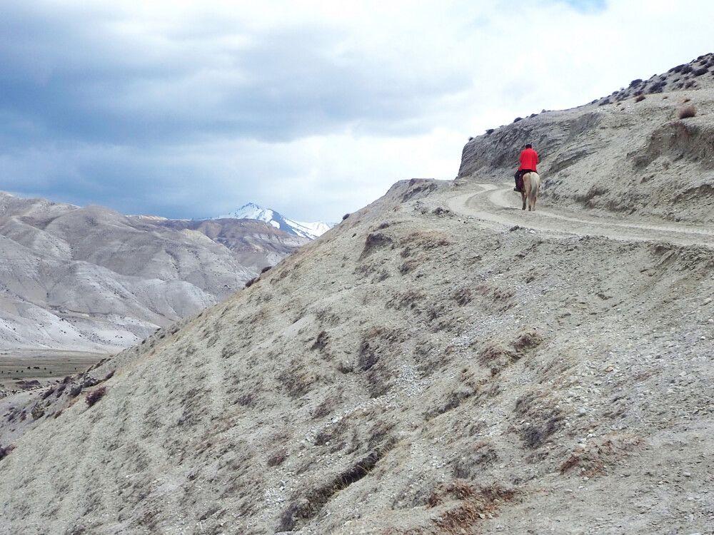 Mustang Trekking