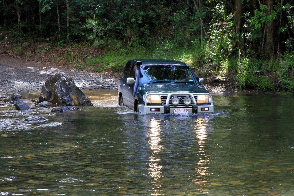Im 4WD durch den Daintree-Nationalpark.