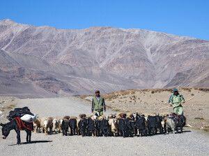 Hirten nahe des Wakhan