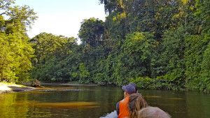 Bootsfahrt durch Borneos Wildniss