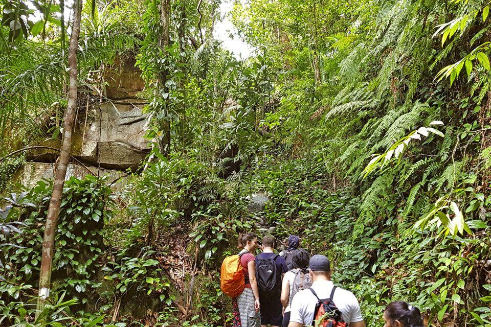 Wanderung im Bako-Nationalpark