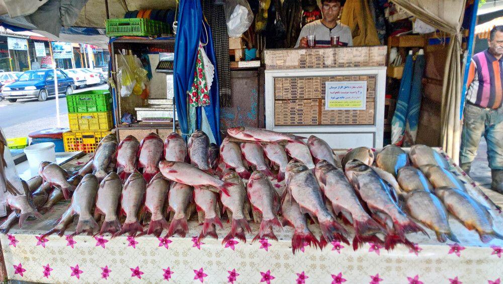 Fischmarkt in Bandar Anzali