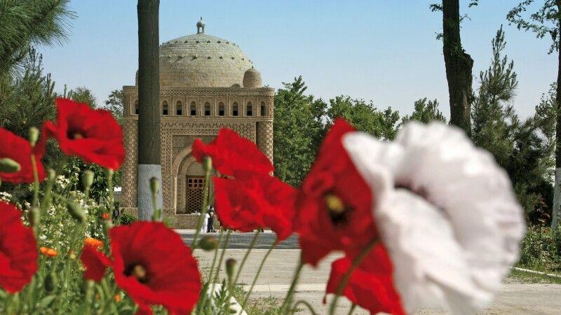 Allee zum Mausoleum © Diamir