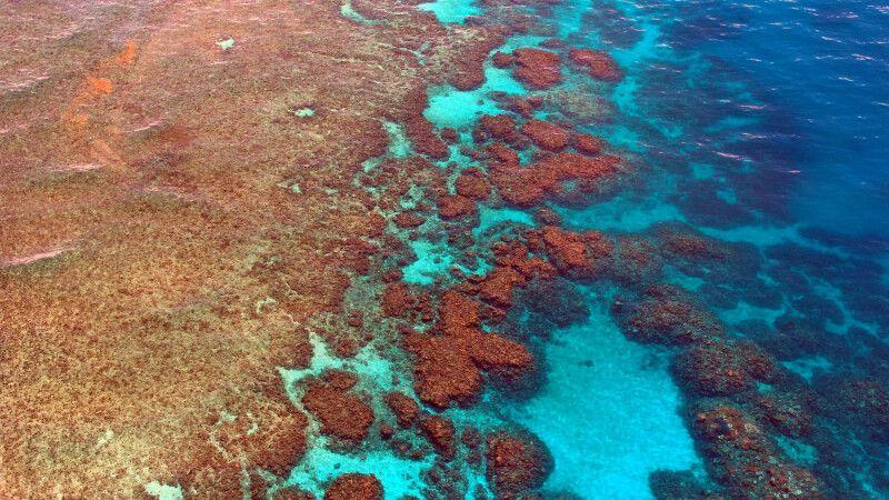 Blick auf die Korallenformationen des Great Barrier Reefs © Diamir