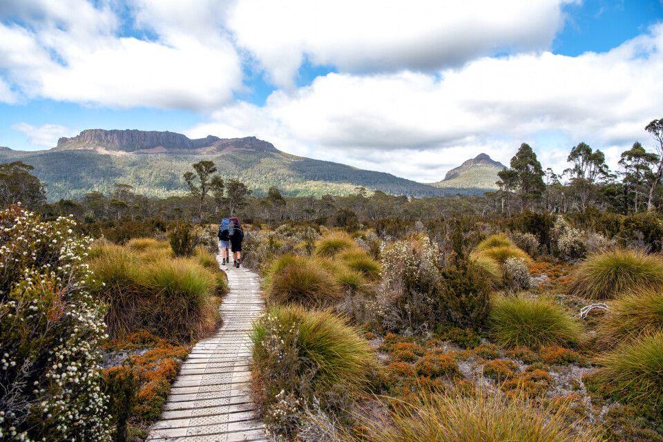 Wandern in Tasmaniens schönen Nationalparks