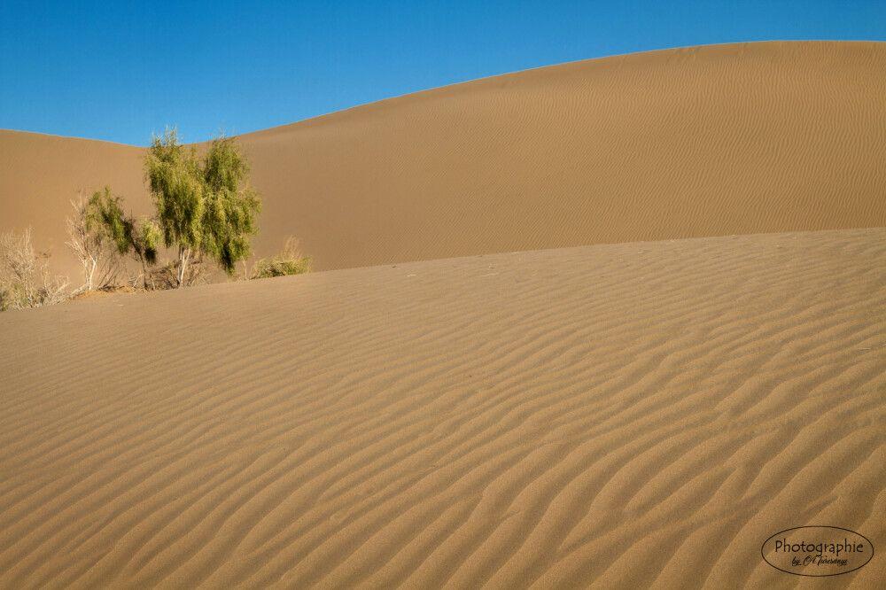 Sanddünen in der Dash-e Kavir