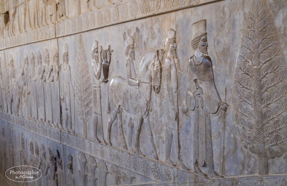 Das Relief des Apadana in Persepolis