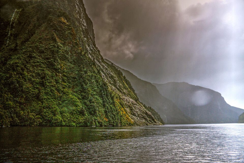 Doubtful Sound im Nebel