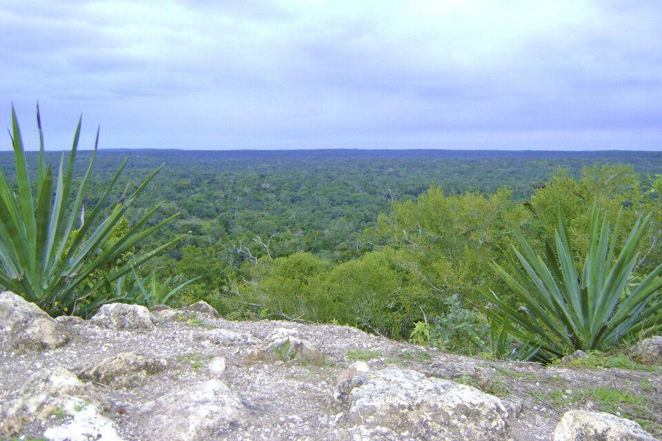 Panoramablick von der Pyramide El Enequen