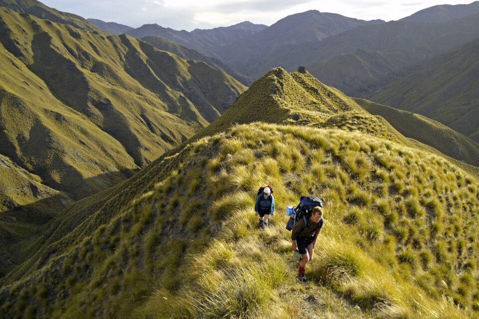 Neuseelands schönste Trekkingtouren erleben