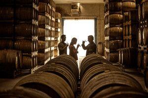 Weinverkostung in Neuseeland