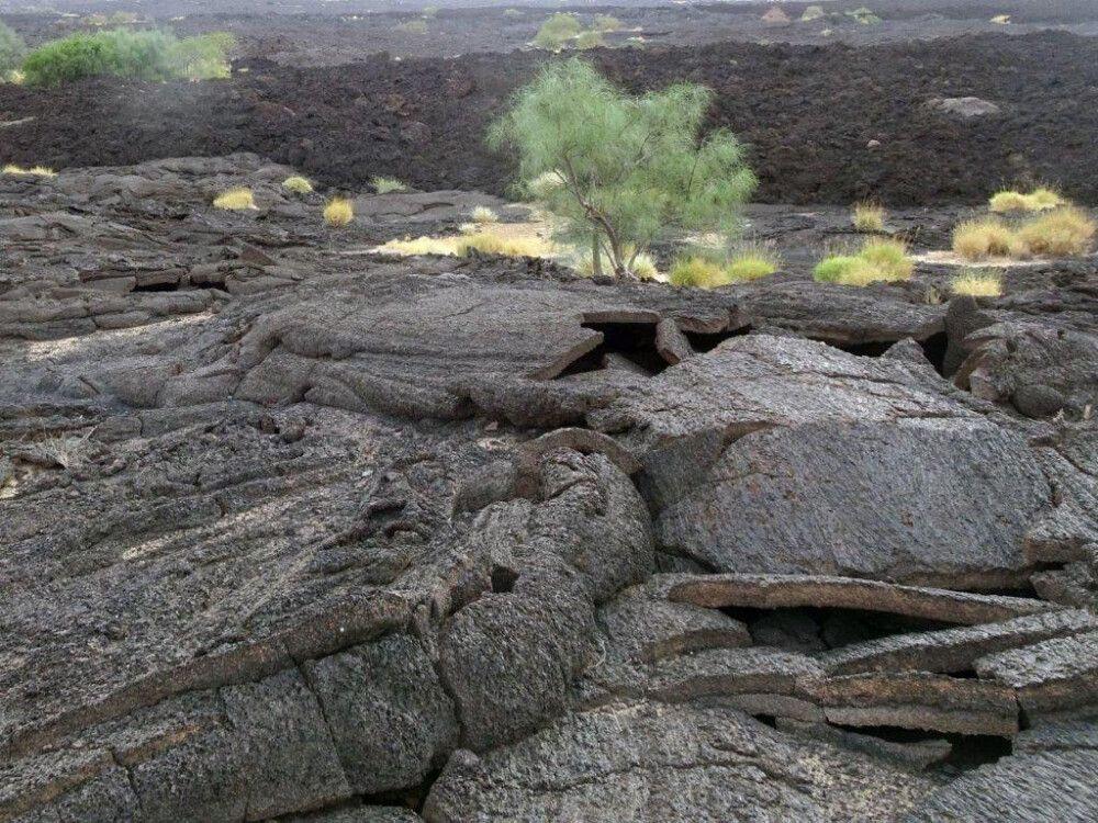 DANAKIL Reisebericht Ulrike Almer – Grün in der erstarrten Lava