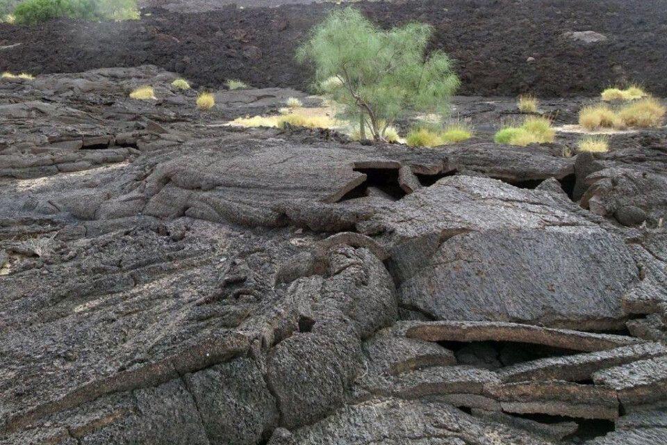 DANAKIL Reisebericht Ulrike Almer - Grün in der erstarrten Lava
