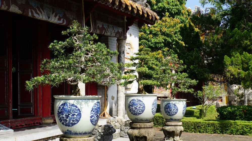 Der Literaturtempel ist geschmückt mit unzähligen Bonsai