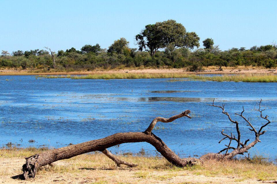 An den Ufern des Okavango liegt der kleine, aber feine Mahangu-Nationalpark an der grenze zu Botswana.