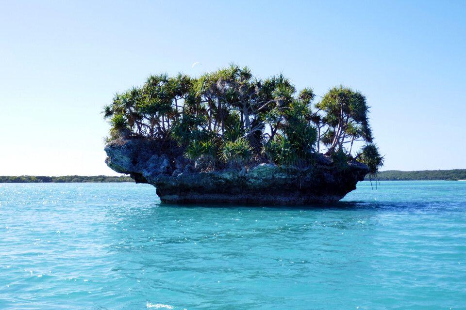 Île des Pins - typischer Felsen in der Bucht von Upi, hauptsächlich mit Pandanus bewachsen