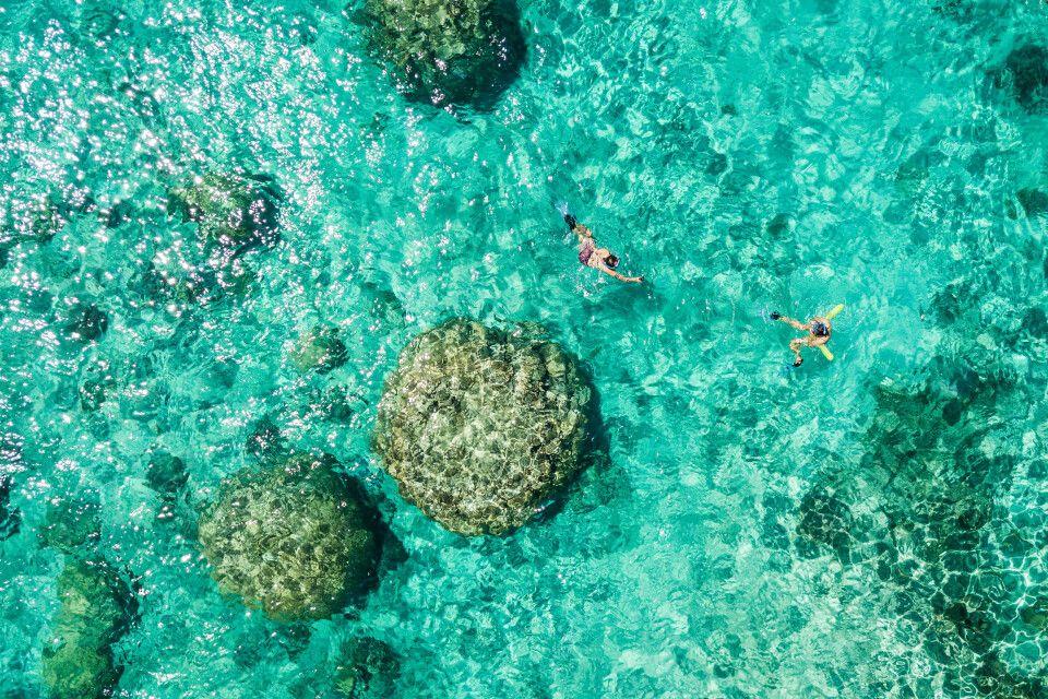 Seit 2008 gehört das Neukaledonische Barriereriff zum Weltnaturerbe der UNESCO.