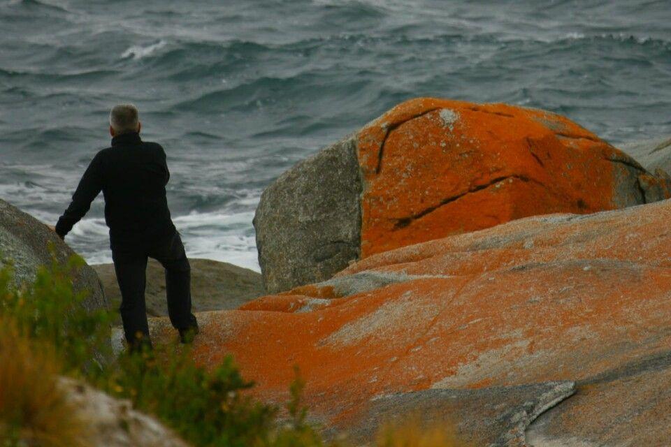 Bay of Fires - Farbschauspiel & schönste Küste Tasmaniens