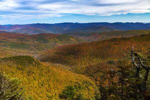 Blick vom Slide Mountain, Ulster County, Catskill Region, New York State